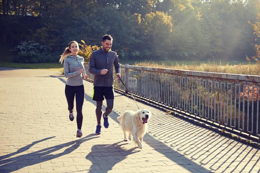 Ein Paar mit Hund beim Laufen.